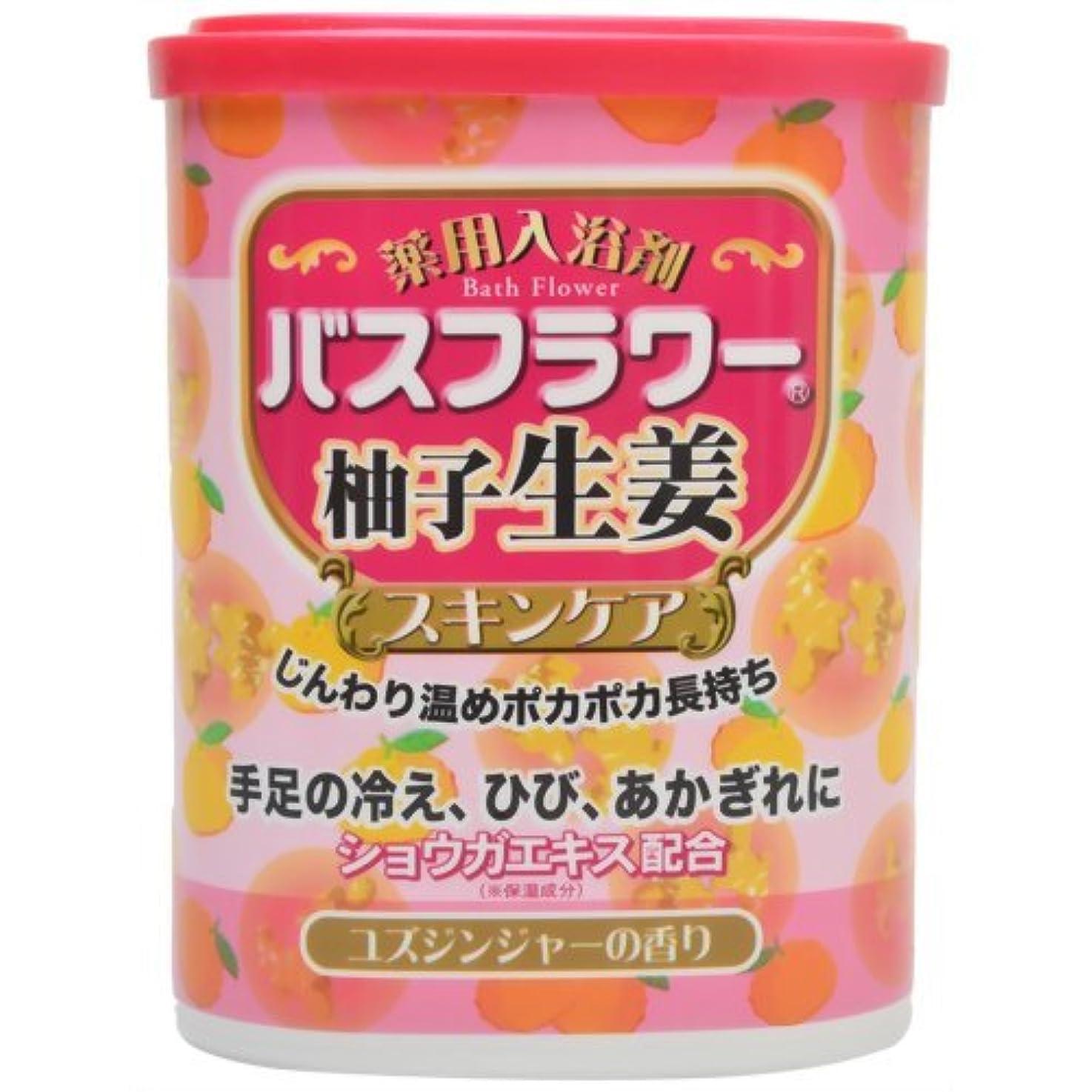 大声で成り立つ固めるバスフラワー 薬用入浴剤スキンケア柚子生姜 680g