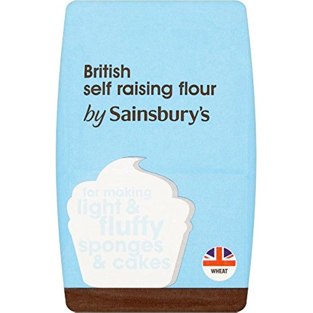 ルート声を出して弱めるSainsbury's Self Raising Flour 500g - (Sainsbury's) 自己調達小麦粉500グラム [並行輸入品]