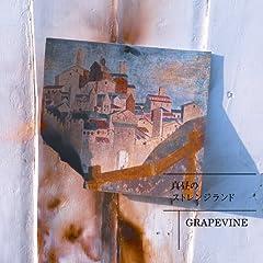 GRAPEVINE「411」のジャケット画像