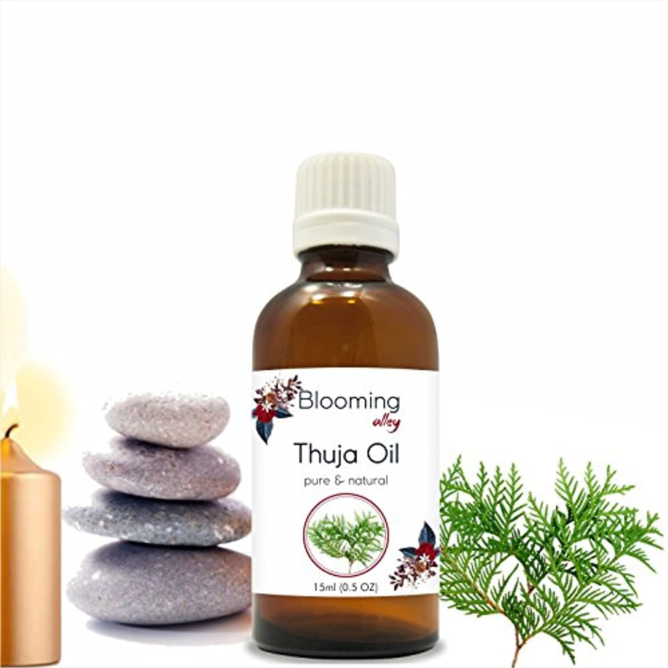プロジェクター熱意不和Thuja Oil(Thuja Orientali) Essential Oil 15 ml or .50 Fl Oz by Blooming Alley