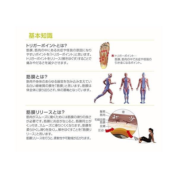 【日本正規品 1年保証】 トリガーポイント(T...の紹介画像9
