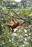 熱帯雨林の自然史―東南アジアのフィールドから