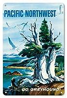 22cm x 30cmヴィンテージハワイアンティンサイン - 太平洋岸北西部 - グレイハウンド - ビンテージな世界旅行のポスター によって作成された S.フレミング c.1958