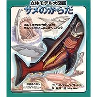立体モデル大図鑑―サメのからだ (こどもライブラリー)