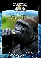 Cosmos: Gorilla [DVD] [Import]