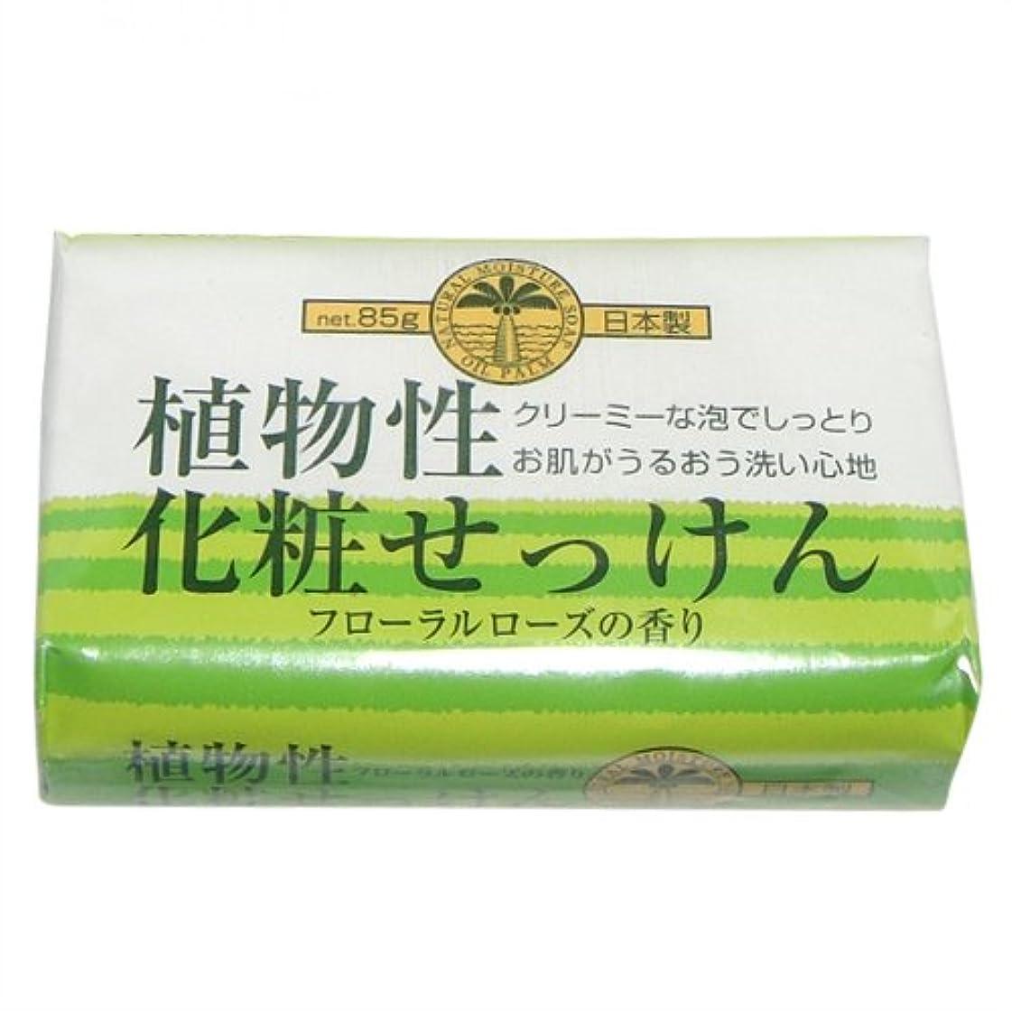 密度伝染性きらめく植物性化粧石けん 85g 1個