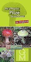 Die giftigsten Pilze Deutschlands im Vergleich: 10er-Set