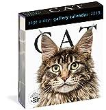 Cat Gallery 2019 Calendar