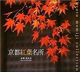 京都紅葉名所 (Suiko books (123))