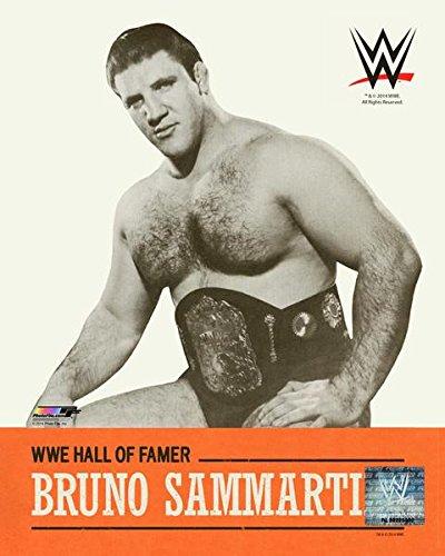 ブルーノ・サンマルチノ?WWE写真8x 10の殿堂B / W
