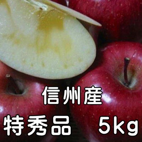 サンふじりんご 5kg 11玉〜18玉 特秀品 信州産 お歳暮 人気 長野サンふじりんご
