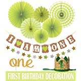 """First Birthday Decoration Set for Girl or Boy- 1st Baby Girl Boy Birthday Party, Stars Paper Garland, Gold Cake Topper """"One"""", Green Banner, Green Fiesta Hanging Paper Fan Flower, Green One Baby Hat"""