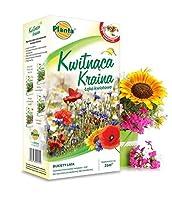 Land of Blooms - Ramos de verano - una seleccian de flores y hierbas largas y abundantes en flor - 200 g - semilla