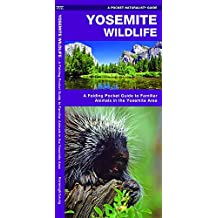 Yosemite Wildlife: A Folding Pocket Guide to Familiar Species