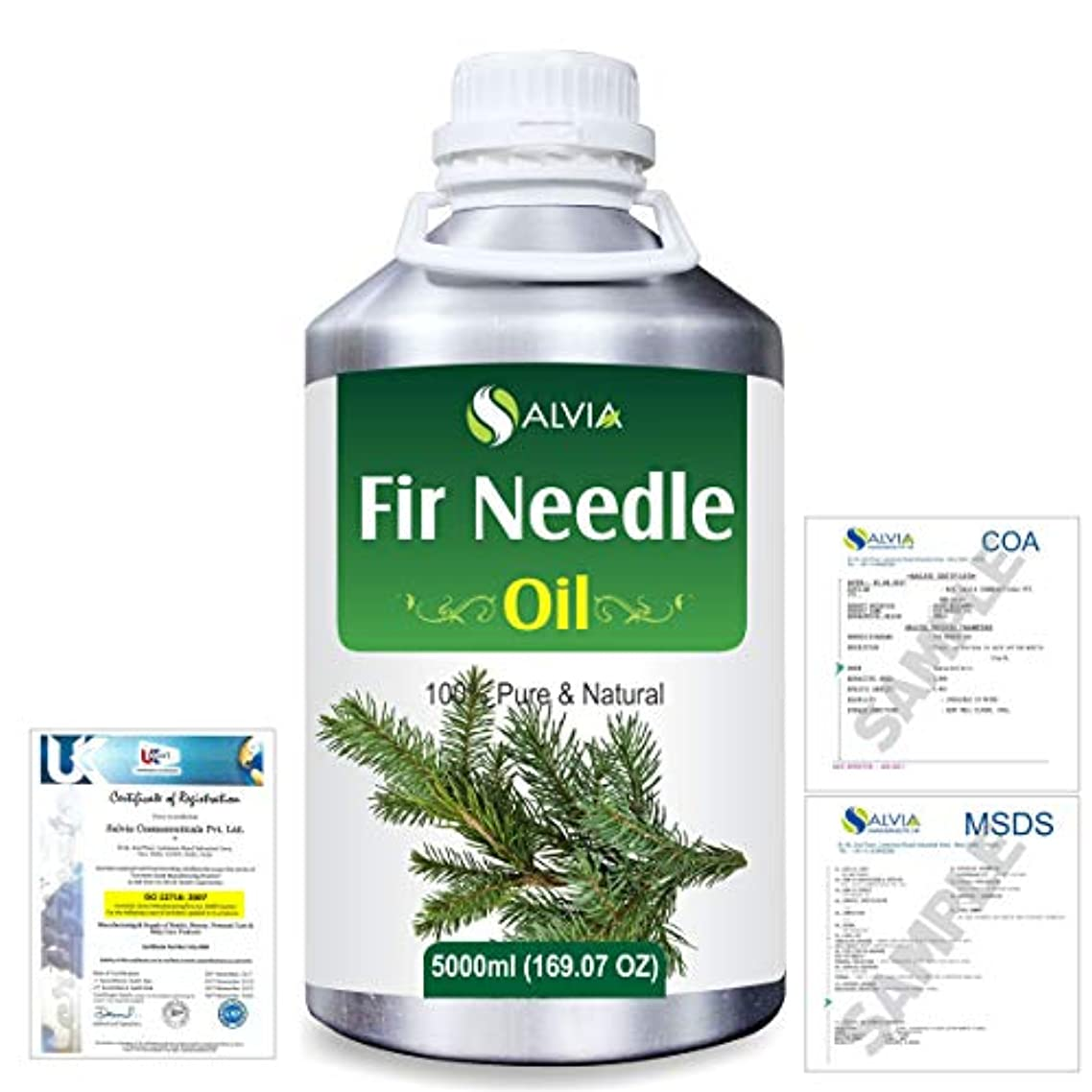コテージディスク最大Fir Needle (Abies balsamea) 100% Natural Pure Essential Oil 5000ml/169fl.oz.