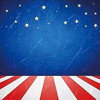 lfeeyアメリカ国旗写真バックドロップ