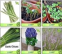 SEEDの種アスパラガス、クレス、水クレス、チャイブ、ラベンダー、ペニーロイヤル種子コンボパックSEEDシードでは(パケットあたり1)
