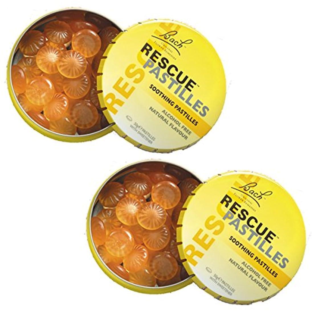 タイムリーなブランド小包【2個セット】 レスキューパステル 50g 日本国内正規品