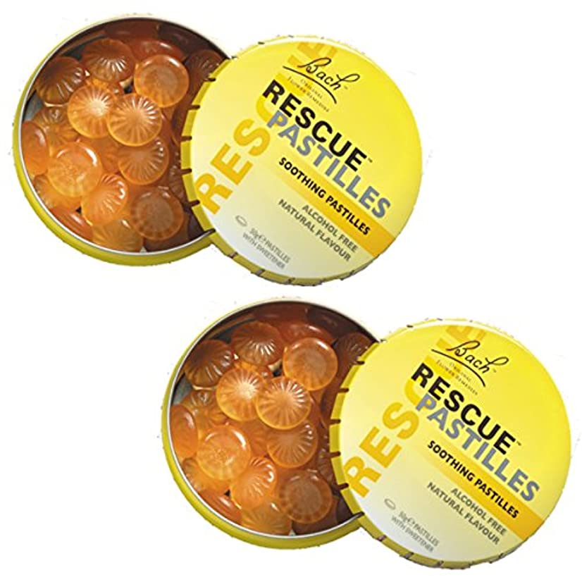 協同抗生物質油【2個セット】 レスキューパステル 50g 日本国内正規品