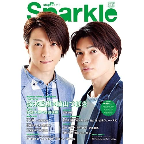 Sparkle Vol.30 (メディアボーイMook)