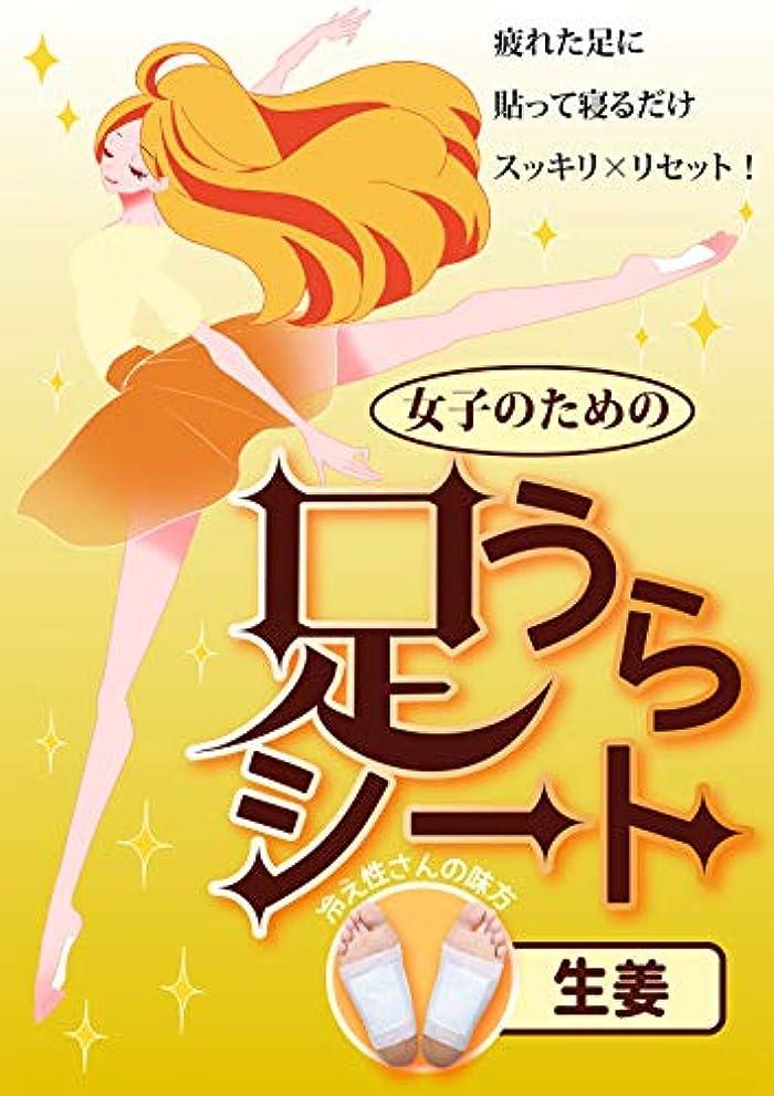 検体毛皮強調する日本製 足うらシート M&Sジャパン 樹液シート 足裏シート フット ケア 足ツボ 健康 (しょうが)