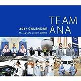 2017年版 ANAカレンダー「TEAM ANAカレンダー」