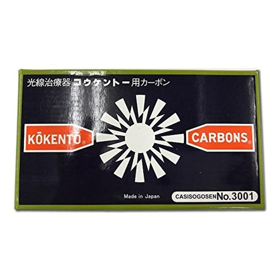 コウケントーカーボン No3001 50本