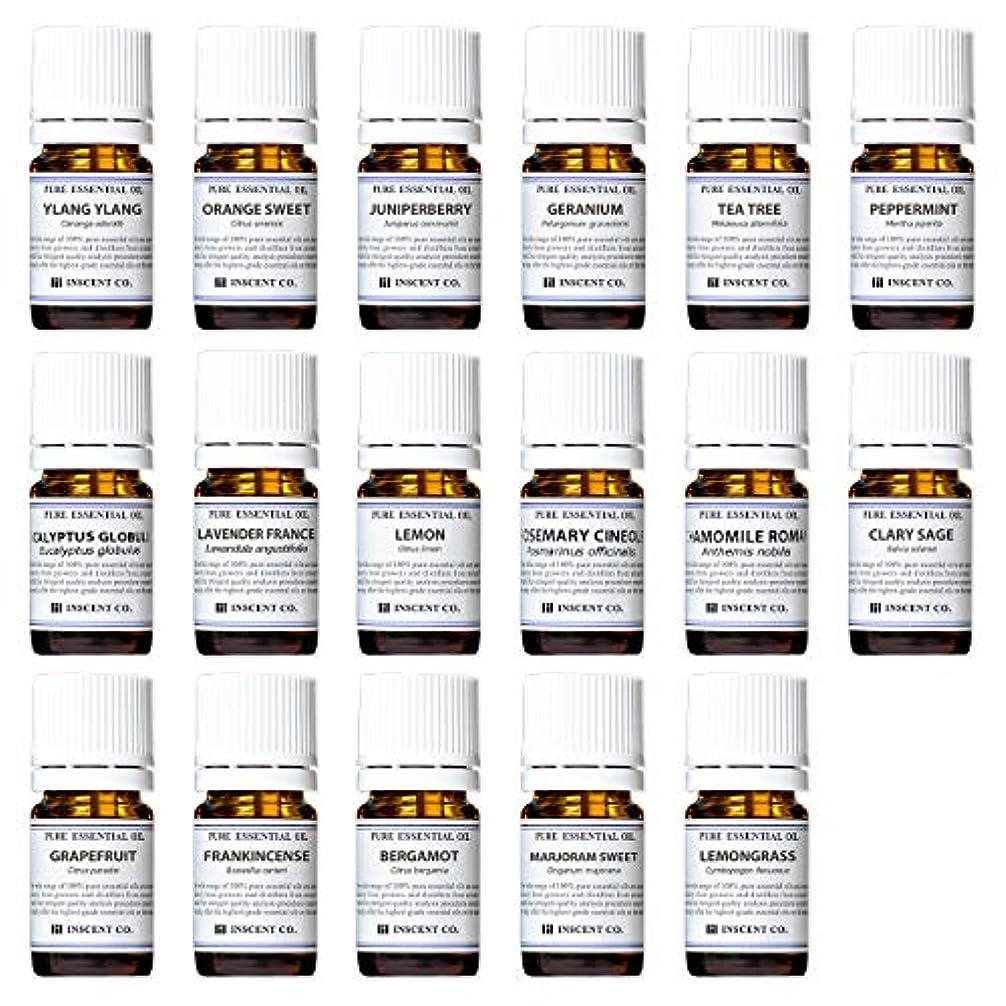 キウイ私たち自身リボンアロマテラピー検定香りテスト対応17種セット エッセンシャルオイル 精油 AEAJ インセント