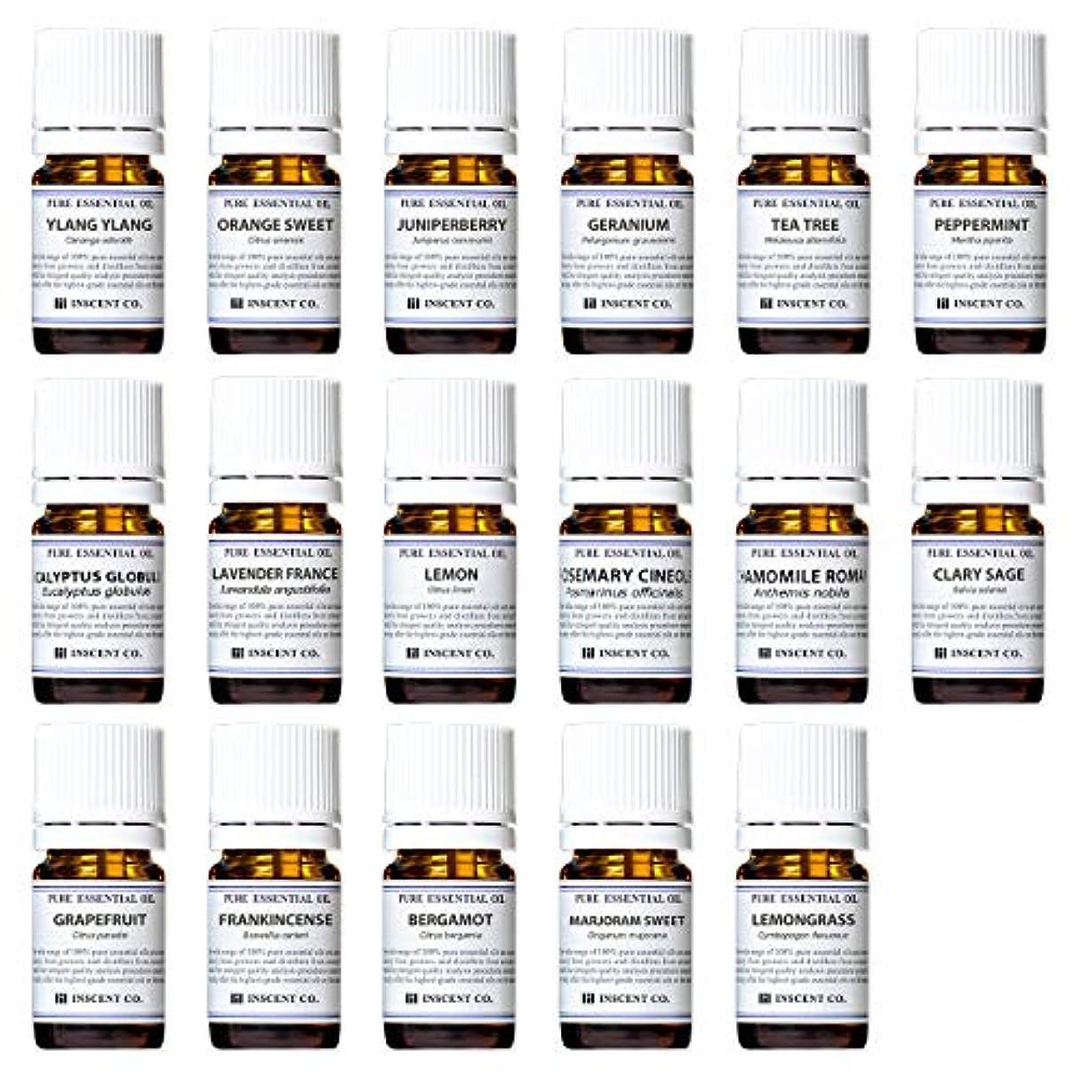 どういたしまして抽出委員長アロマテラピー検定香りテスト対応17種セット エッセンシャルオイル 精油 AEAJ インセント