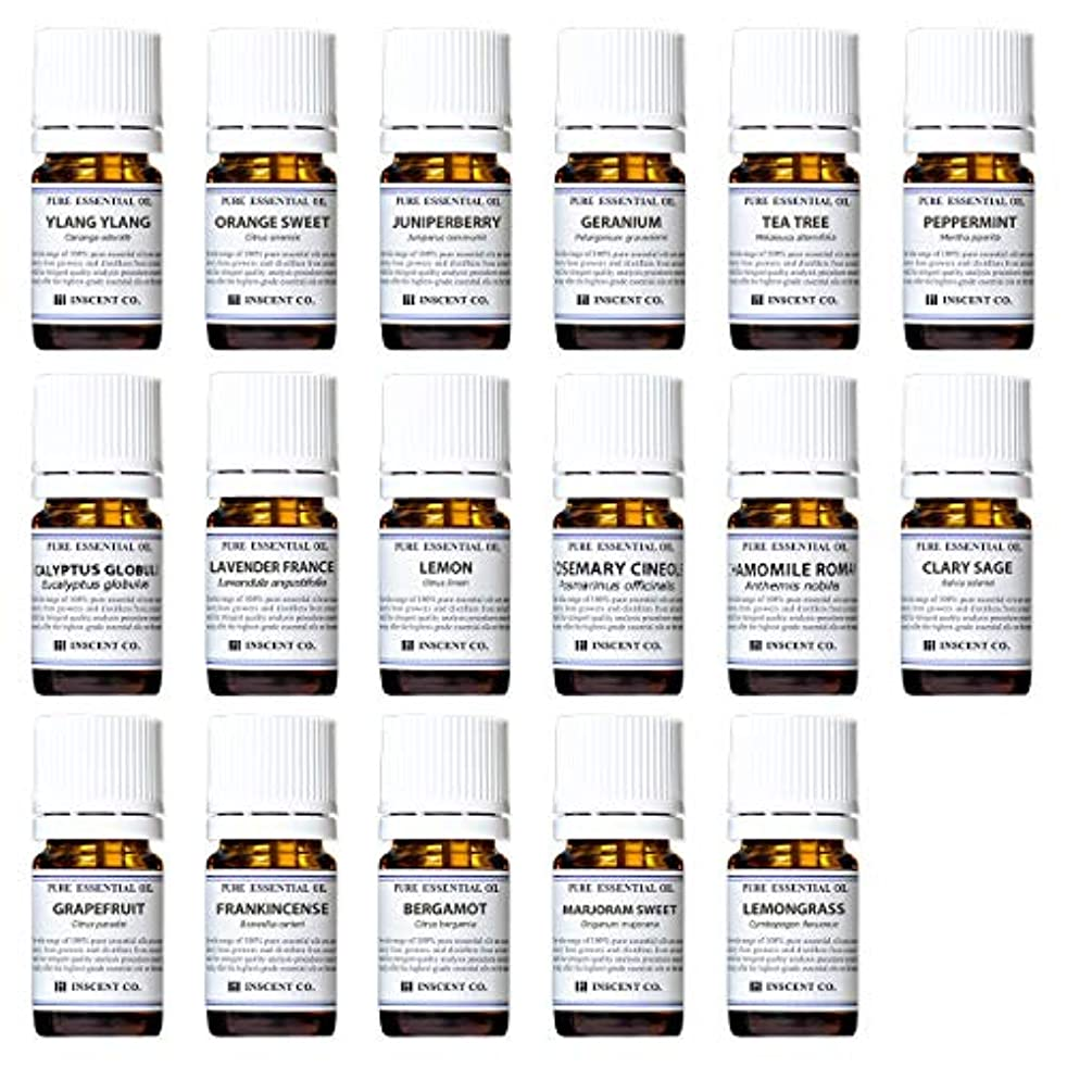 スクリーチどっち高層ビルアロマテラピー検定香りテスト対応17種セット エッセンシャルオイル 精油 AEAJ インセント