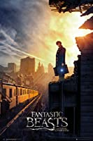 Fantastic Beasts - One Sheet 2 Poster - 91.5x61cm