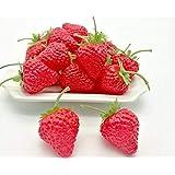 Adadoo ヘタ付き イチゴ 20個セット 本物そっくり 食品サンプル 果物 ケーキ屋さん 果物屋さんの ディスプレイなどにも