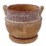 SPICE OF LIFE(スパイス) 植木鉢 編みかごプランター チャビー ブラウン Sサイズ 幅13.5cm 奥行12.5cm 高さ12cm CBGZ1021BR