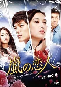 嵐の恋人 DVD-BOXII