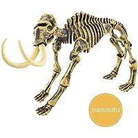 Boomnow 恐竜玩具 サイエンス教育ディグキット 恐竜化石掘削キット 子供への最高のギフト Boomnow