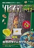 化石コレクション12 (朝日ビジュアルシリーズ)