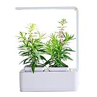 空気庭の収穫と食品のハーブシードバッグのスーツ水の植物の成長機自動給水給水怠惰な屋内花のポットサイズ260 * 210 * 107ミリメートル