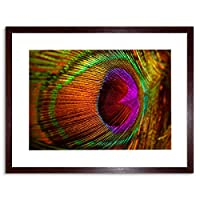 Photo Composition Macro Close Up Peacock Feather Framed Wall Art Print
