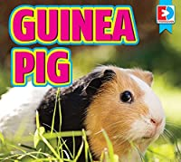 Guinea Pig (Eyediscover)