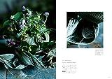 Flower Noritake フラワーノリタケの花々 画像