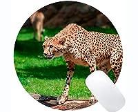個人化されたマウスパッド、ヒョウの捕食者の点のマウスパッドの非スリップのゴム