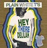 Hey There Delilah [7 inch Analog]