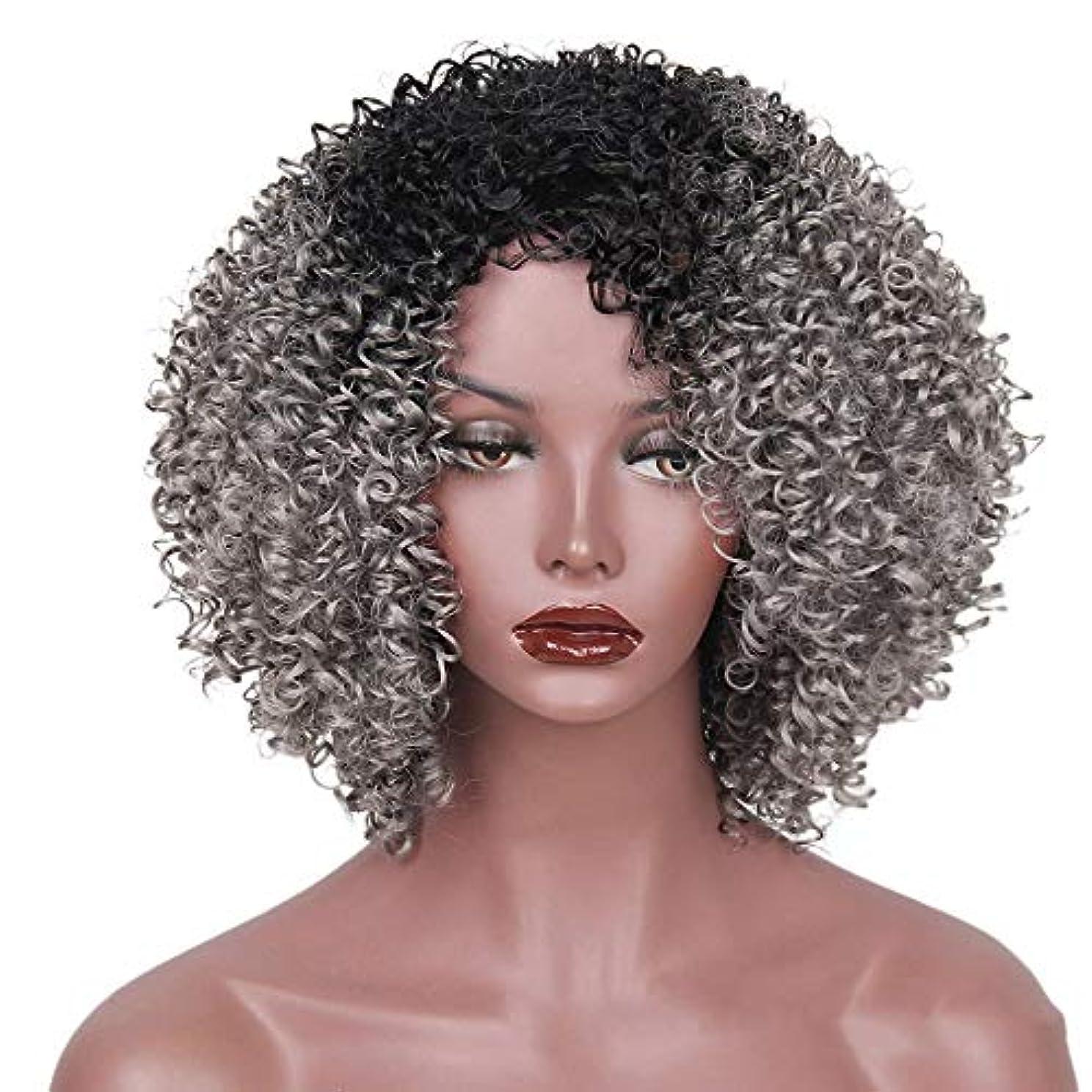 テロリストふさわしいソーシャルWASAIO アフリカの黒人女性のグラデーションカラー爆発ヘッドふわふわ小波髪ウィッグアクセサリースタイル交換繊維合成14インチ (色 : C-3)