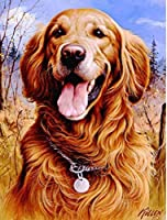 Xiyuyuan ダイヤモンド塗装フルダイヤモンドラウンドダイヤモンドゴールデンレトリバー犬現代のホームデコレーション絵画リビングルーム壁画