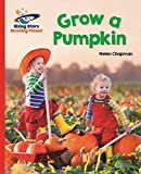 Reading Planet - Grow a Pumpkin - Red B: Galaxy (Rising Stars Reading Planet) (English Edition)