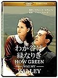 わが谷は緑なりき(How Green Was My Valley) [DVD]劇場版(4:3)【超高画質名作映画シリーズ41】 デジタルリマスター版