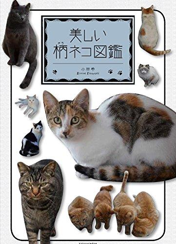 美しい柄ネコ図鑑の詳細を見る