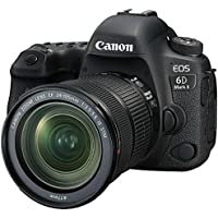 Canon デジタル一眼レフカメラ EOS 6D Mark II EF24-105 IS STM レンズキット