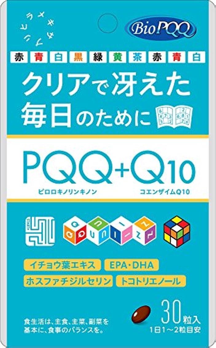 蒸発松明巨大PQQ+Q10 30粒