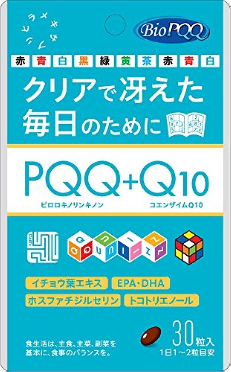 ノミネートゴミ箱を空にする会議PQQ+Q10 30粒